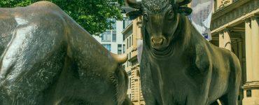 Bull market e Bear market: o que significa o touro e o urso para mercado financeiro