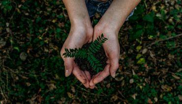 Entenda o termo ESG e porque são bem vistos pelos investidores